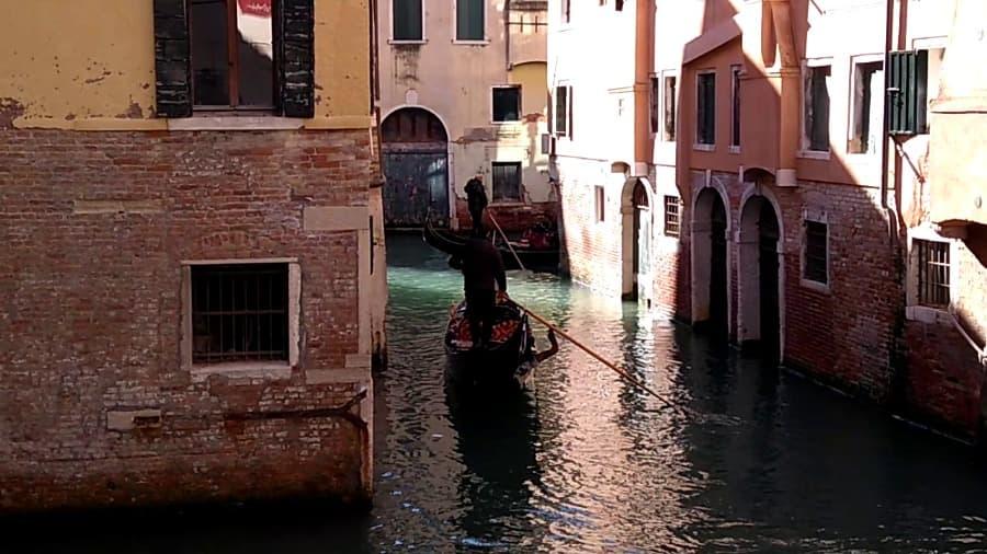 Swimming in Venice Canals Swimming in Venice Canals